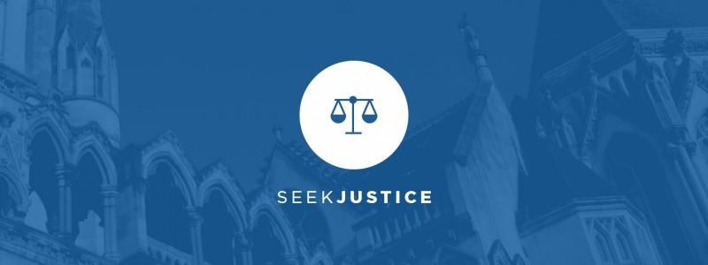 Vision Graphic - Seek justice